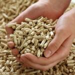 Biomassza: brikett vagy pellet felhasználása