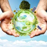 Megújuló erőforrások
