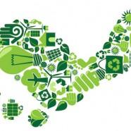 12 bizonyíték, hogy a Mapei-jel zöldebb az élet
